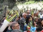 domenica_palme-2012-04-01-09-55-52