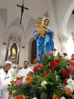 processione-della-madonna-2016-05-29-22-07-32